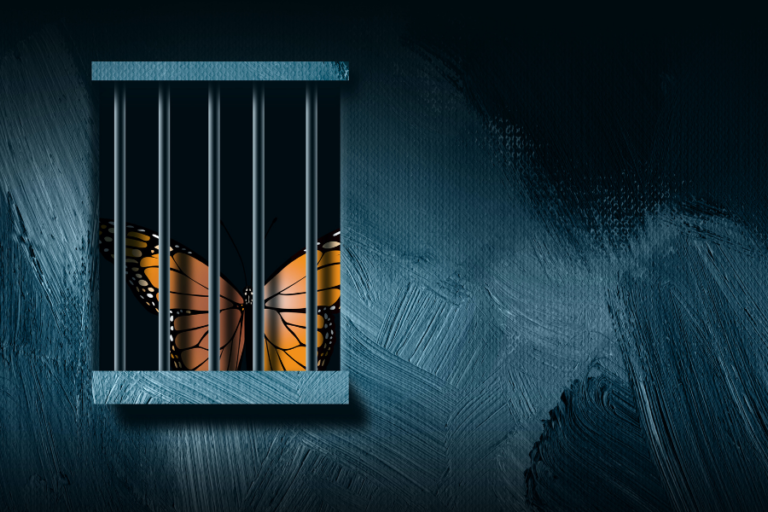 Introducing Growth: Transforming Penal Reform Together